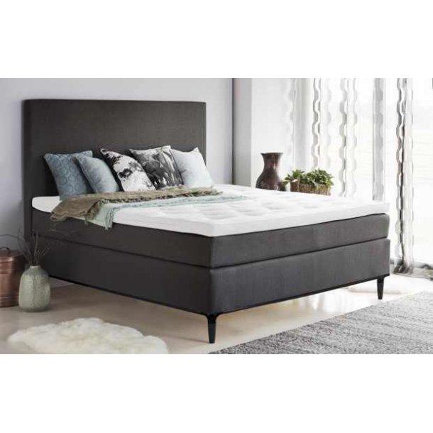 continental seng tilbud